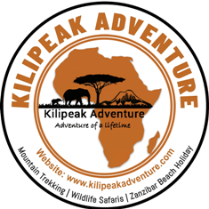 The Kilipeak Adventure Web Logo